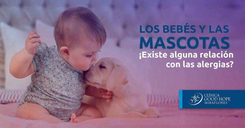 Los bebés y las mascotas: ¿existe alguna relación con las alergias?